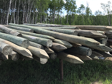 treated 12 ft fence posts